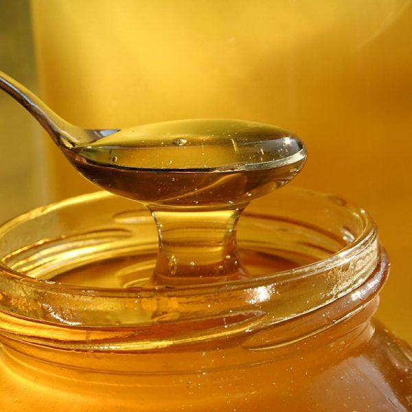 Venta de miel por mayor